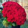 rožės, 100 rožių, šimtas rožių, rožės valentino dienai, gėlės valentino dienai, valentino diena, gėlės į namus, geles i namus, geles vilniuje