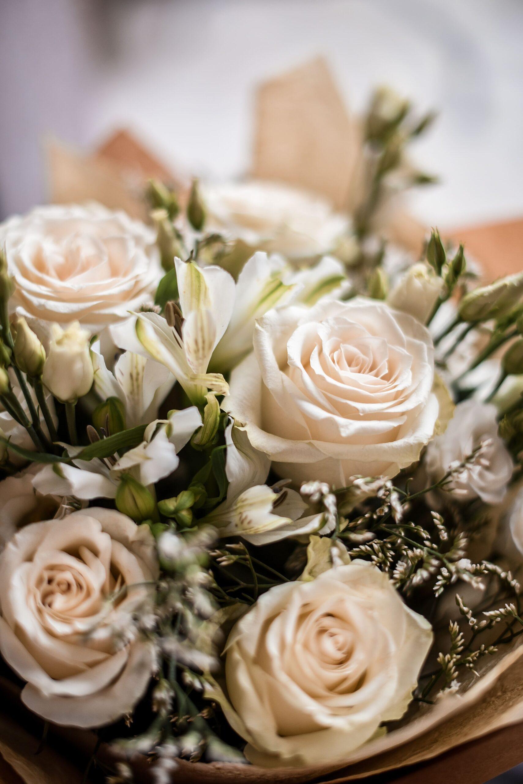 geles, puokste, geles i namus, geles vilniuje, gimtadienio geles, rozes, baltos rozes, rozes i namus, rozes vilniuje